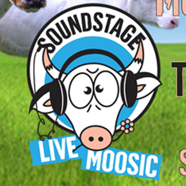 The Hoppings - Sound Stage (Web Banner).